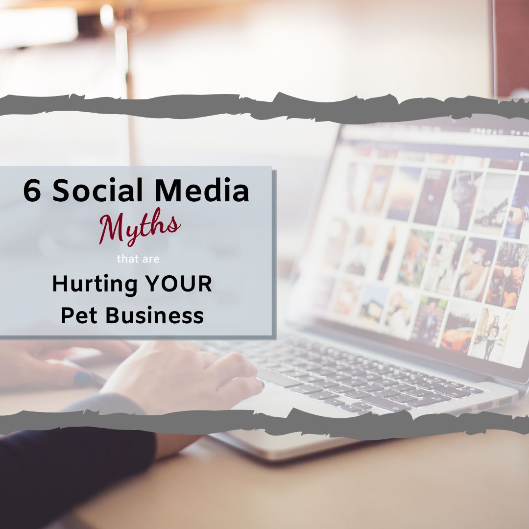 Social Media Marketing Myths hurting your pet business