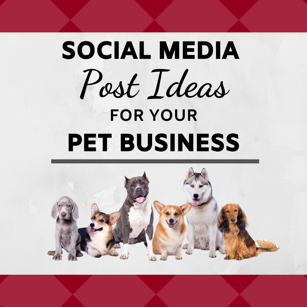 Social Media Post Ideas for Your Pet Business